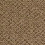 Shaw Carpet timeless charm loop