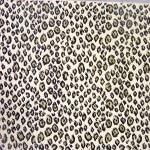 New Leopard Caracal