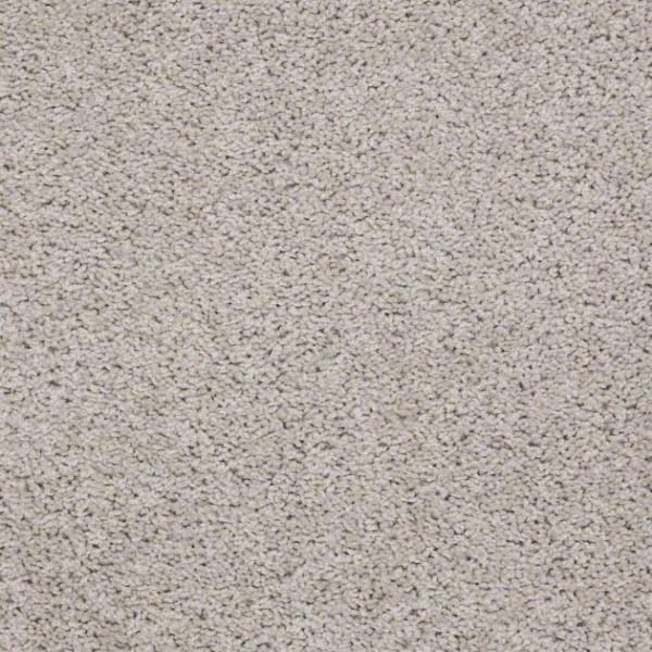 Shaw Carpet Mcentire Warehouse Carpets