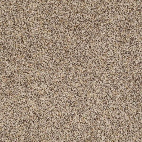Shaw Carpet Treasure Trove Texture III : Warehouse Carpets
