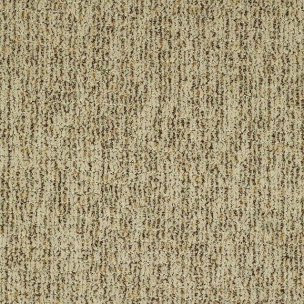 Shaw Carpet Treasure Trove Weave Warehouse Carpets
