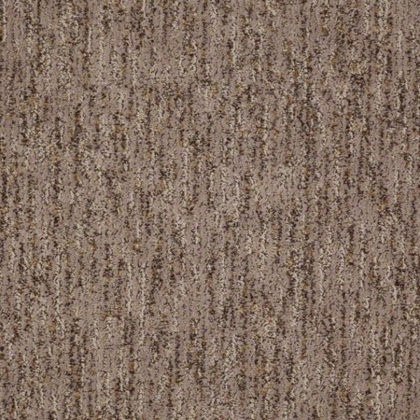 Shaw Carpet Treasure Trove Image Warehouse Carpets