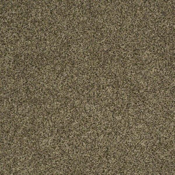 Shaw Carpet Polished Texture Ii Warehouse Carpets