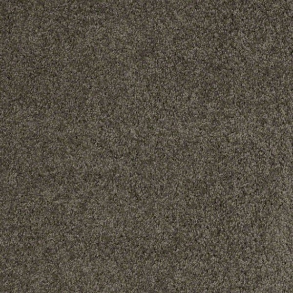 Shaw carpet leading legacy warehouse carpets for Taupe color carpet