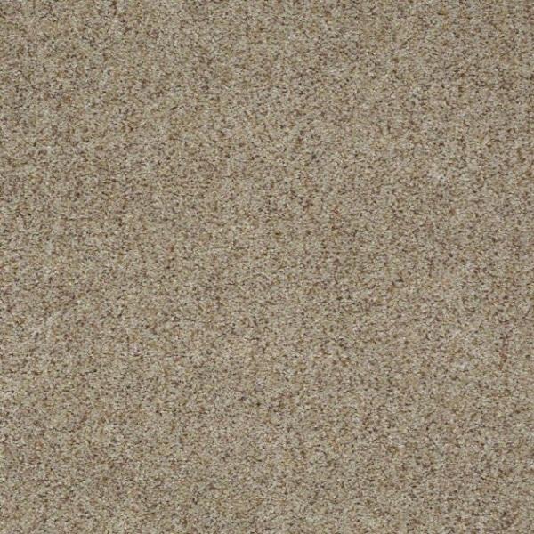 Shaw Carpets Great Beginning B Warehouse Carpets