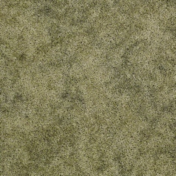 Starting Outby Shaw Warehouse Carpets