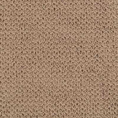 Mohawk Carpet Forward Thought Warehouse Carpets