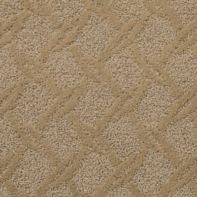 Mohawk Carpet Guided Path Warehouse Carpets