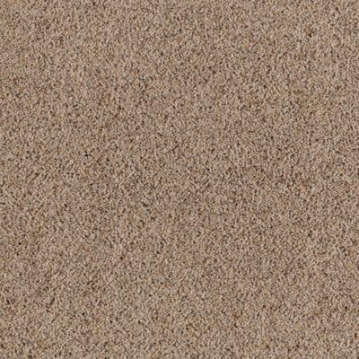 Mohawk Carpet Serene Selection Warehouse Carpets