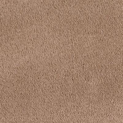 Mohawk Carpet Truly Tender Iii Warehouse Carpets