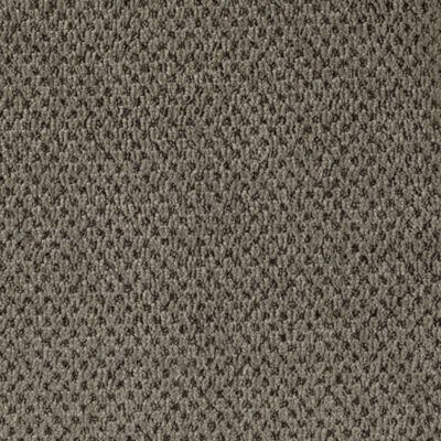 Mohawk Carpet Comfortably Classic Warehouse Carpets