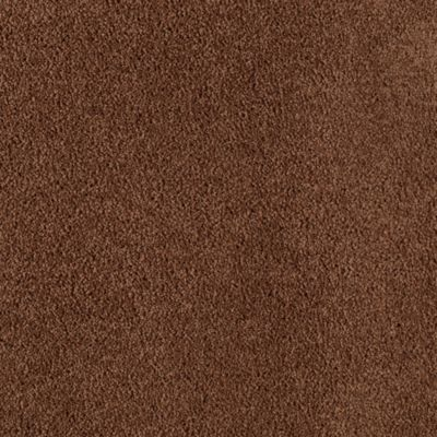 Mohawk Carpet Truly Tender Iii Warehouse Carpets