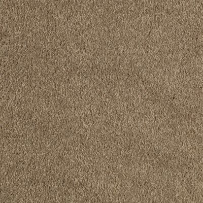 Mohawk Carpets Sheer Ecstasy Warehouse Carpets