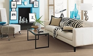 Mohawk Carpet Designer Delight Warehouse Carpets