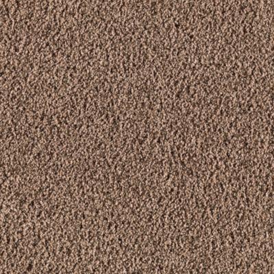 Mohawk Carpet Secret Fascination