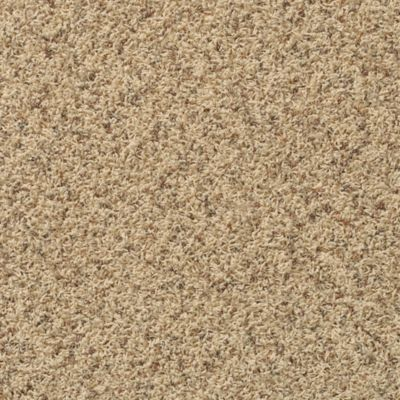 Mohawk Carpet Sundancer Warehouse Carpets