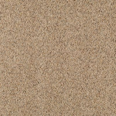 Mohawk carpet relaxing retreat warehouse carpets for Mohawk flooring warranty