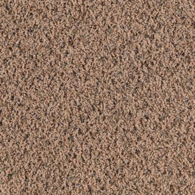 Mohawk Carpet Enlightened Decor Warehouse Carpets