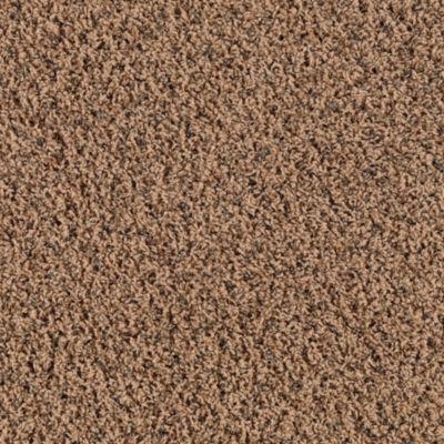 Mohawk Carpet Charming Motif