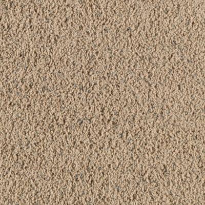 Mohawk Carpet Claim To Fame Warehouse Carpets