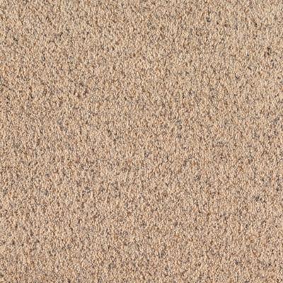 Mohawk Carpet Relaxed Moments Ii Warehouse Carpets
