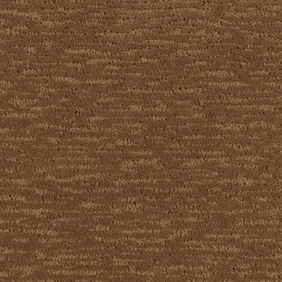 Mohawk Carpet Glamorous Touch