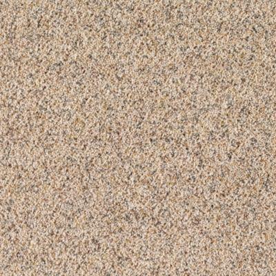 Mohawk Carpets Amazing Inspiration Warehouse Carpets