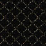 Magical Trellis by Kane Carpet 883609 Black Hollyhock