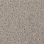 grey moon 25652