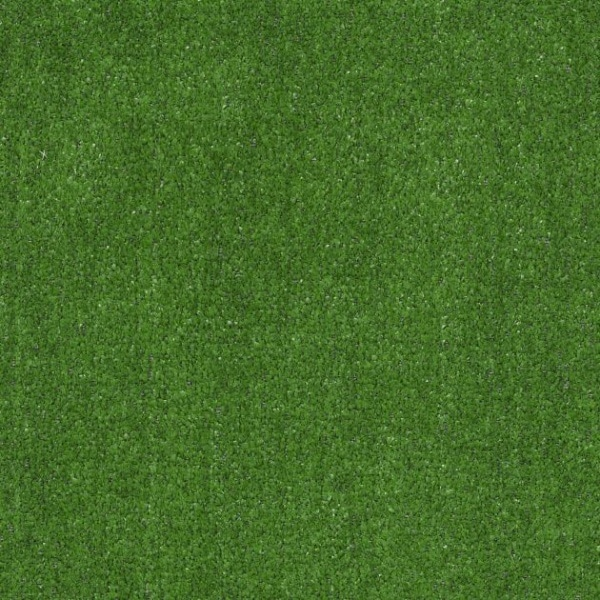 Shaw Turf Arbor View S Warehouse Carpets