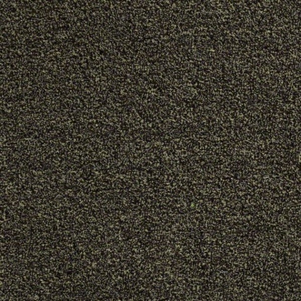 Shaw Turf Cabana Tweed Warehouse Carpets