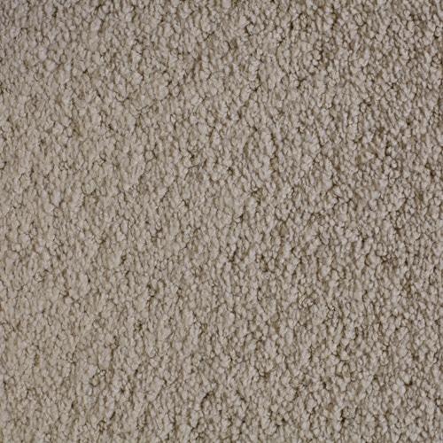 Dream Weaver Carpet Elegant Touch Warehouse Carpets