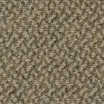 Kraus Carpet Excitement Plus F204502