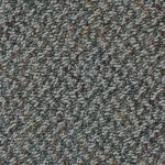 Kraus Carpet Excitement Plus F204503