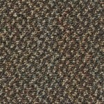 Kraus Carpet Excitement Plus F204537