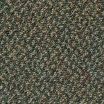 Kraus Carpet Excitement Plus F204548