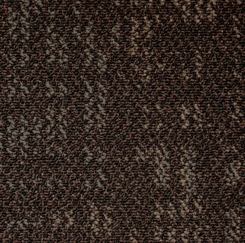 Elegance By Kraus Carpet At Wholesale Prices Warehouse