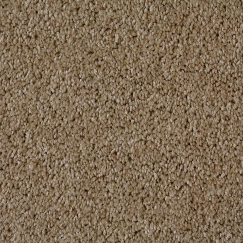 Dream Weaver Carpet Luxuriant Warehouse Carpets