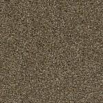 MOUNTAIN RANGE_540 BLACK WALNUT