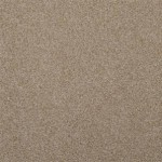 NEW TAUPE - 27510