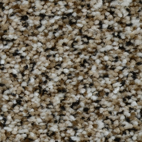 Dream Weaver Carpet Renowned : Warehouse Carpets