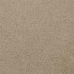 Sanderling - 35641