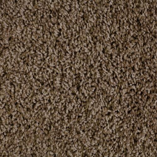Dream Weaver Carpet Unbelievable : Warehouse Carpets