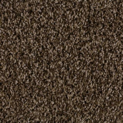 Dream Weaver Carpet Unbelievable Warehouse Carpets