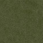 balsam green