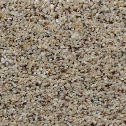 Dream Weaver Carpet Adventurous Warehouse Carpets