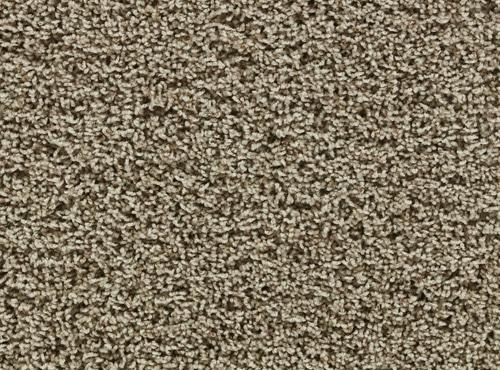 Beaulieu Carpet Earthy Warehouse Carpets