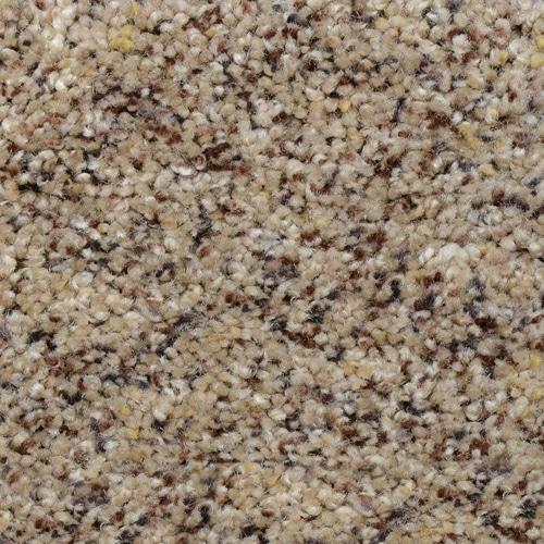Dream Weaver Carpet Adventurous