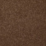 spare brown