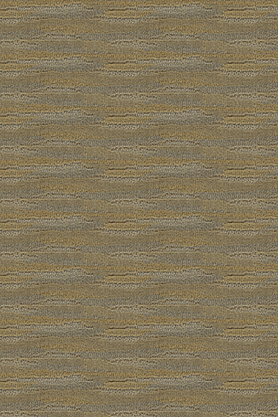 Lexmark Carpetpure